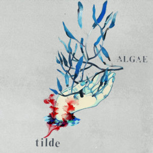 Tilde Algae